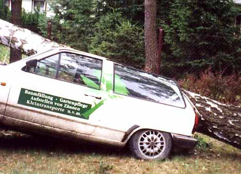 Baumf 228 Llung